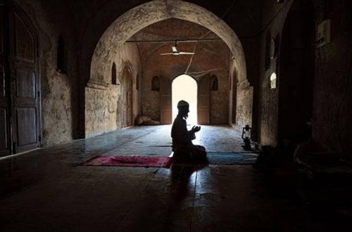 Article : Profession de foi